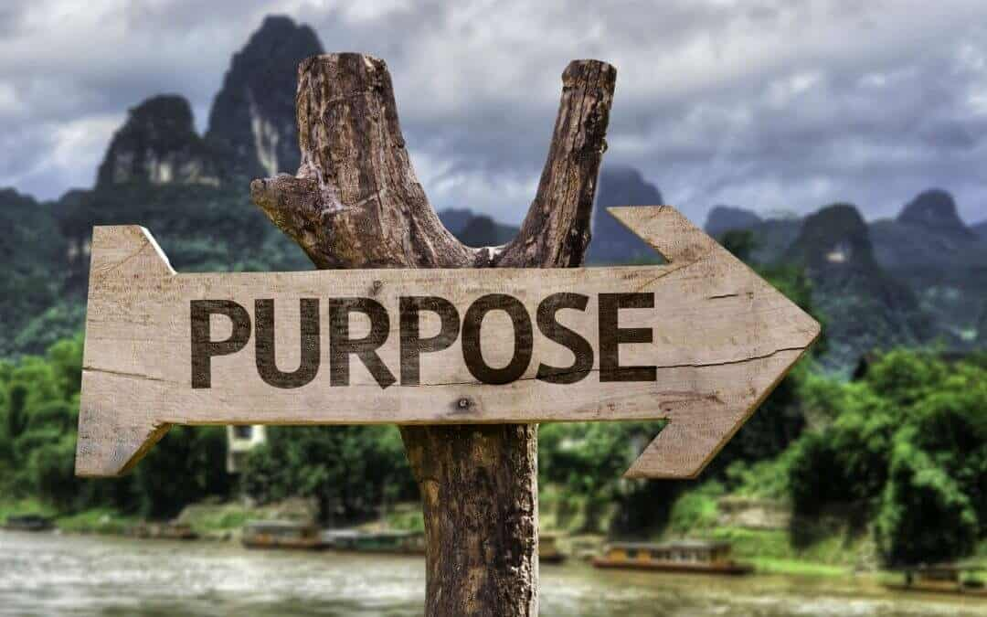 Have You Found Your Purpose?