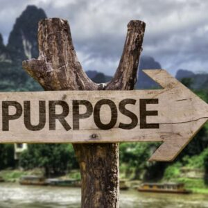 Have you found your purpose