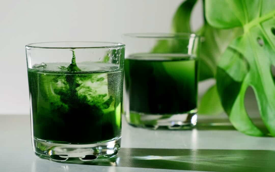 Is Chlorophyll Worth the Hype?