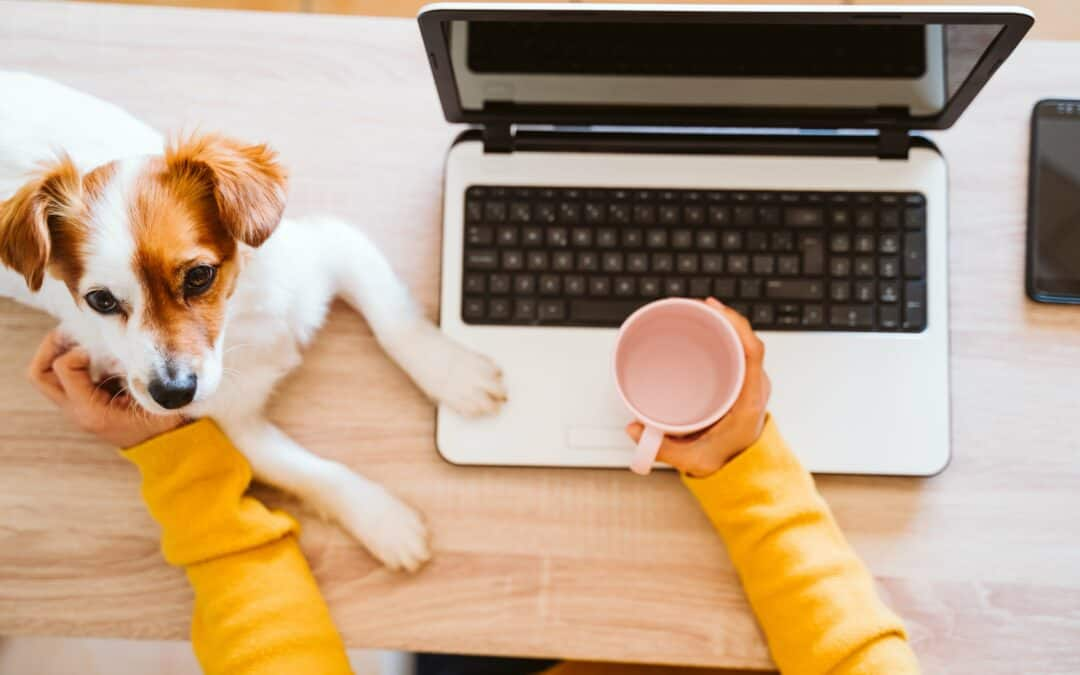6 Tips for Maintaining Work-Life Balance When Working from Home
